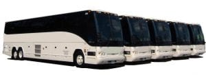 Showroom Charter Bus Fleet